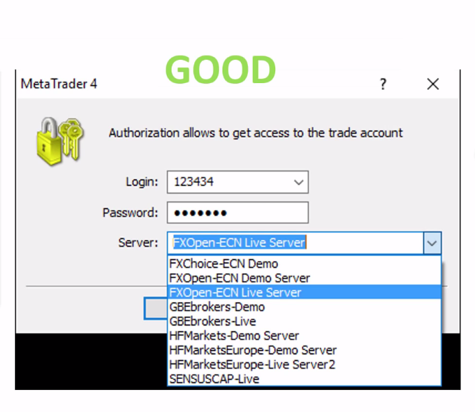 An example of trustworthy trader's server details